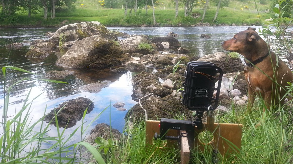 Maginon camera at Kincardine