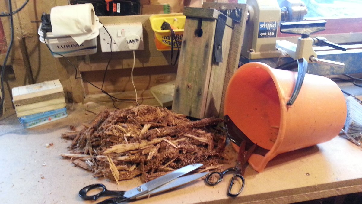 Shredding wood for nest boxes