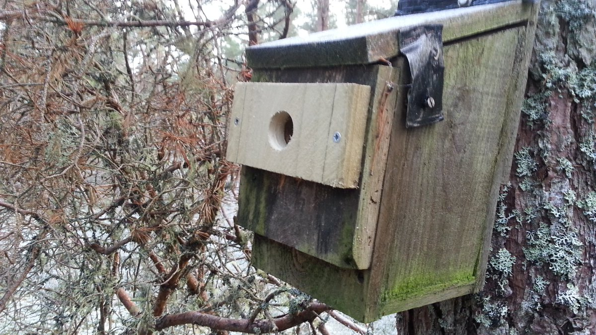 Nest Box With New Front